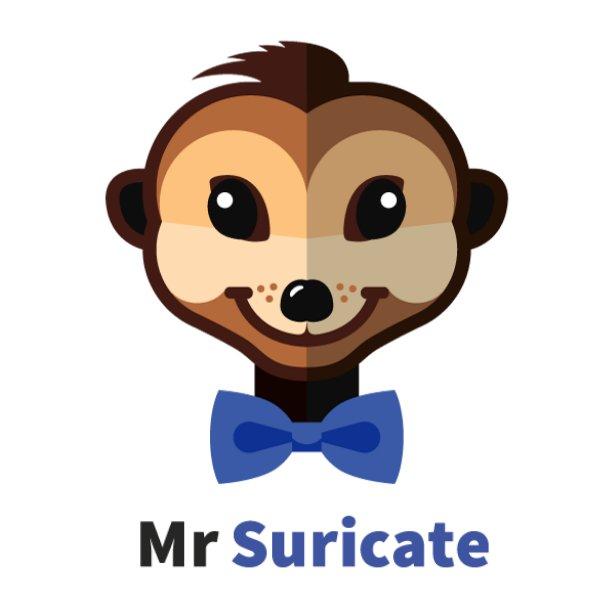 Mr Suricate